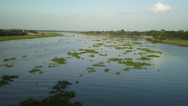 মধুমতি নদী